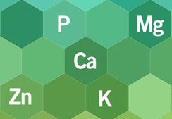 blog_minerals